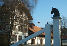 The Swiss National Stud has run two stallion herds.