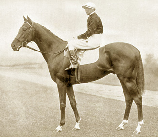 The beautiful stallion Hyperion was a Triple Crown winner trained at Newmarket by George Lambton.