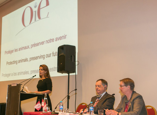Princess Haya speaks at the opening of the 81st General Session of the World Assembly of OIE Delegates in Paris with OIE president Dr Karin Schwabenbauer and OIE director general Dr Bernard Vallat. ©