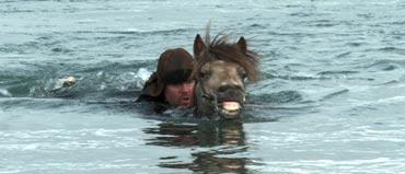 In the swim in Hross Í Oss.