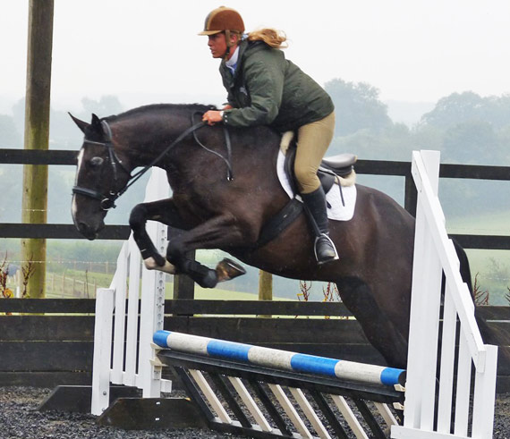 Duke in his first jumping event - over colored poles and indoors for the first time - with The Horse Trust's trainer Jane Calvert.