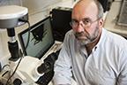 Tick expert Stephen Rich. Photo: Nancy Palmieri