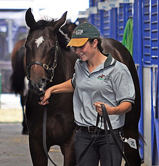 Christine at the Melbourne Premier Yearling Sales, 2009.