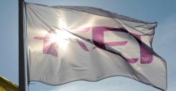 fei-flag