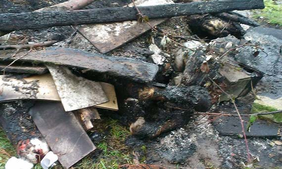The remains of the horse deliberately doused in fuel and set alight in Dublin. Photo: DSPCA