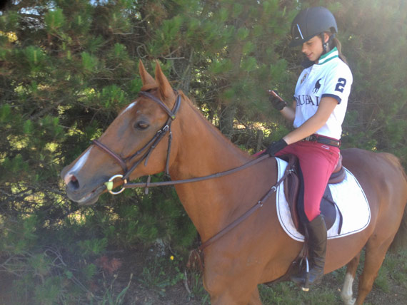Rebecca van Tiel keeps up to date with Stable Diary.