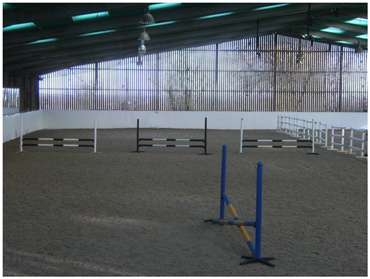 The test arena, comprising three trial jumps and a practice jump.
