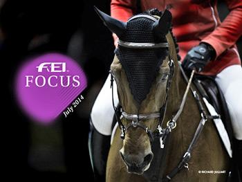 FEI-Focus