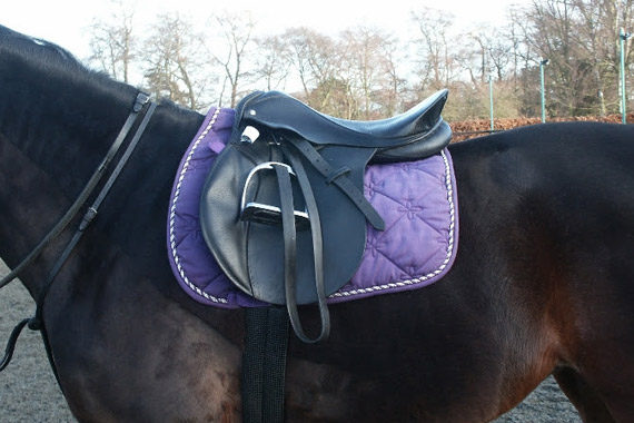 Image shows that the seat of the saddle tips back.  The panels of the saddle have contact with the horse's back at the front and the back but not under the middle of the saddle. This is called bridging and causes focal pressure under the front and back of the saddle.