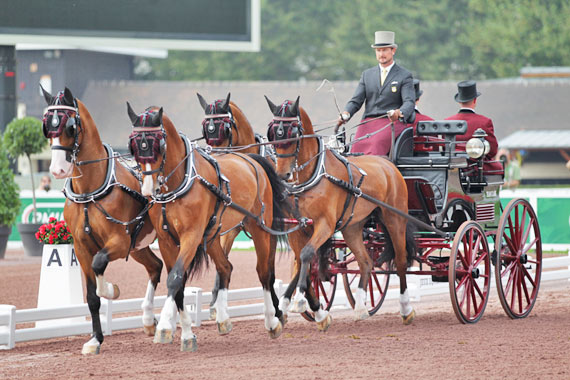 Four-in hand driver Chester Weber (USA) has won the driven dressage competition at the Alltech FEI World Equestrian Games in Normandy.