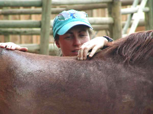 Chrissy Harley works on a patient. There are many benefits in massage for horses, such as increased strength and endurance, along with agility and grace in their movement.