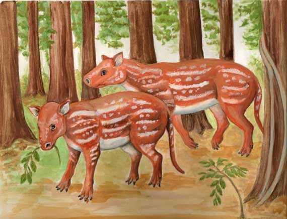 An artist's depiction of Cambaytherium thewissi. Image: Elaine Kasmer
