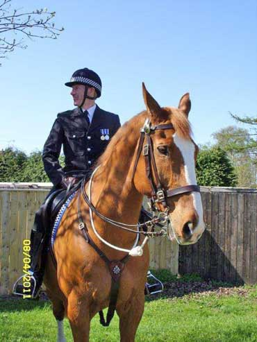 Ross is pictured with an officer named as Rick, who enjoyed police work with the big Hanoverian.