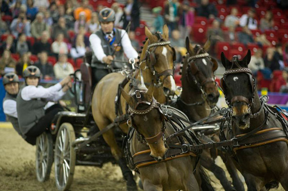 Koos De Ronde (NED) won his first qualifier of the FEI World Cup Driving 2014/15 season at Budapest on Sunday.