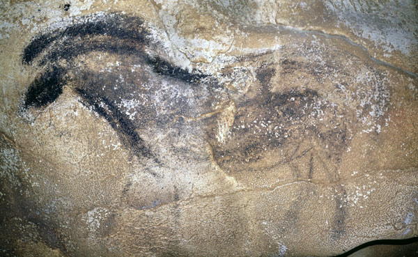 The panel-brushed horse from the Chauvet cave. Photo: Valérie Feruglio/French Ministry of Culture and Communication.