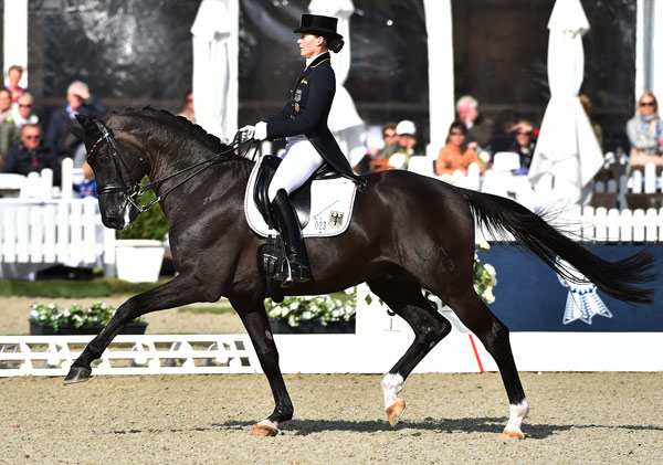 German Rider Ends Charlotte S World Dressage Ranking Reign Horsetalk Co Nz