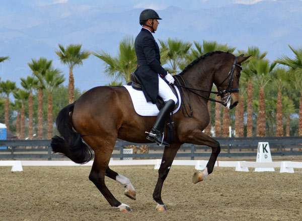 Two demonstrations by leading US dressage rider Steffen Peters will take place during showjumping's Longines Masters  Masters of LA event in October. Peters is pictured here on Rosamunde, owned by Four Winds Farm.