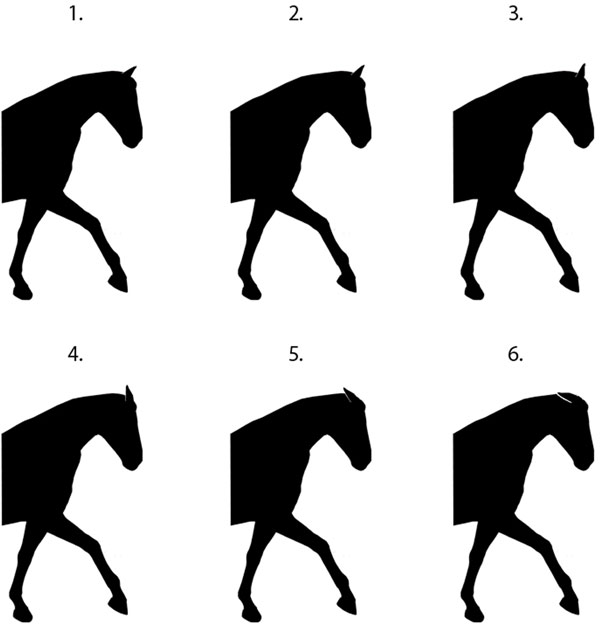 The six ear position illustrations presented in random order to participants.
