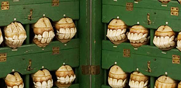 The collection of papier mache horse teeth commissioned for use by the French cavalry. Photo: Whipple Museum/CC BY-NC-SA 3.0
