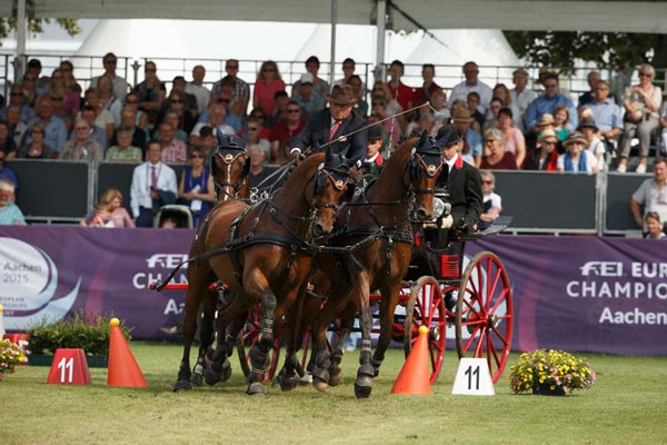 Double world champion Felix Marie Brasseur from Belgium won the cones phase of the FEI European Driving Championships for Four-in-Hand at Aachen on Friday. The final marathon phase on Saturday will decide the European individual and team champions.