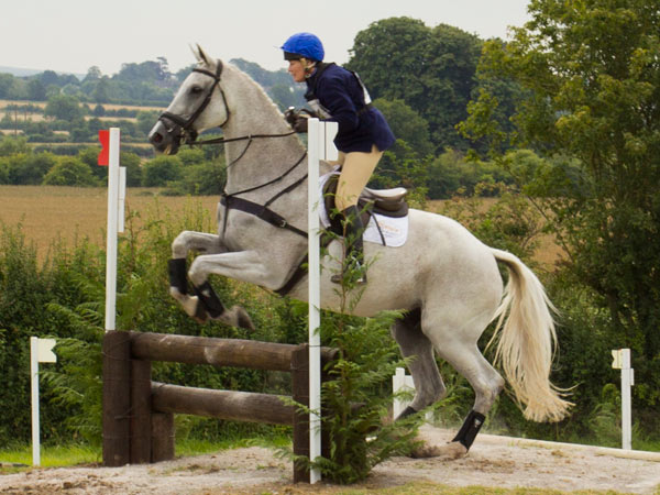 Jane Holderness-Roddam and Tiger Eye II on the cross-country at West Wilts.