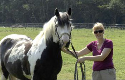 "Jennifer Wathan with Bartie:  ""What surprised us was the rich repertoire of complex facial movements in horses, and how many of them are similar to humans."" Photo: University of Sussex"