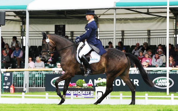 Michael Jung and FischerRocana FST at Burghley Horse Trials 2015.