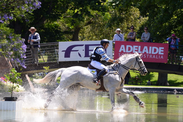 Australian International Three-Day-Event winner Shane Rose and CP Qualified on Saturday's cross-country.