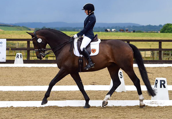 Blind British dressage rider Verity Smith and her horse Szekit are on the road to the Rio Olympic Games.