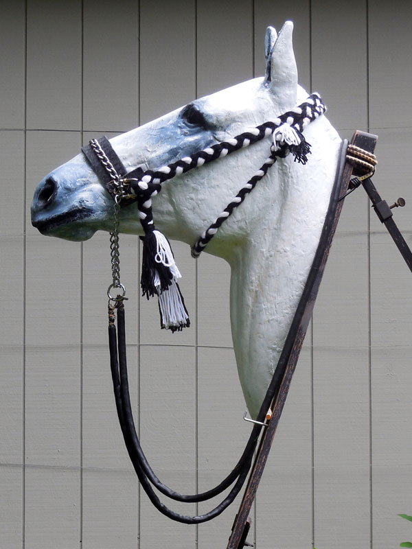 The left side of the bridle features a loop used to tie off the throat lash.