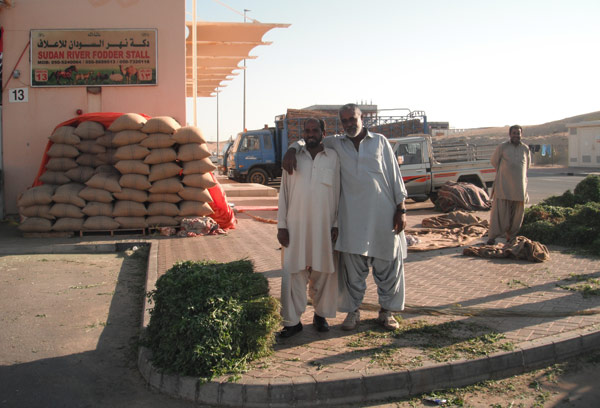 Staff at one of the many camel feed stores are ready and waiting to deliver alfalfa to hungry camelids.