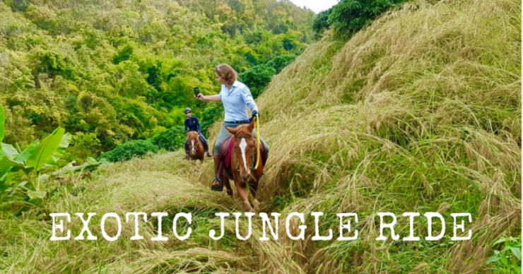 exotic jungle ride