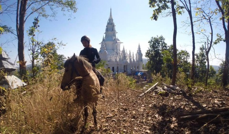 Horse Riding Chiangmai - Serene Temple Ride