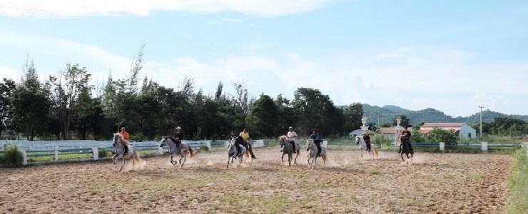 Horse-Riding-Bangkok-Khaoyai-Thailand