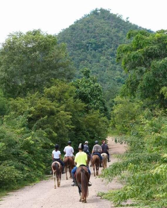 Horseback Thailand