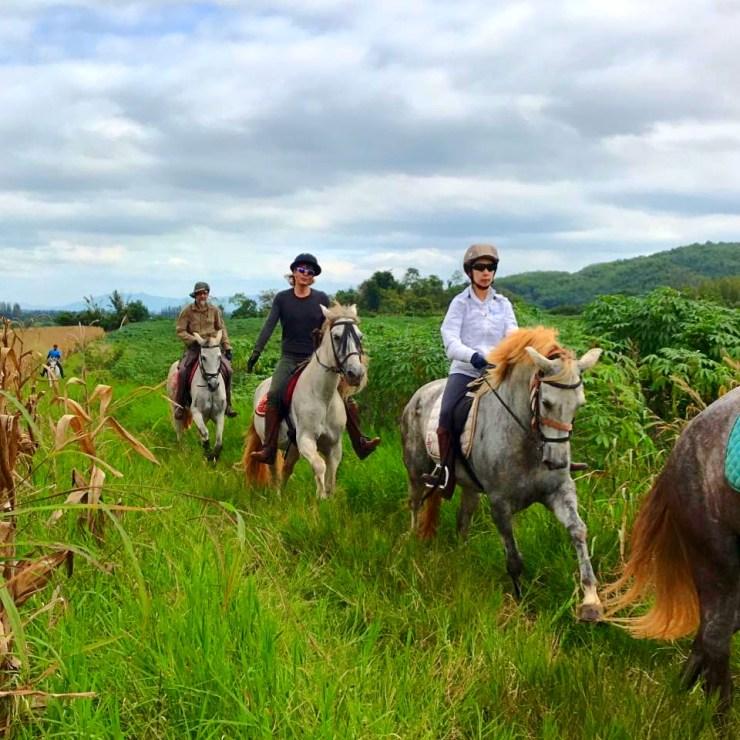 Horse-Riding-Thailand-Bangkok-Khaoyai-10