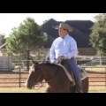 Enhance Your Trail Performance Maintaining Your Fluidity Over The Poles with World Champion Horse Trainer, Bruce Walquist