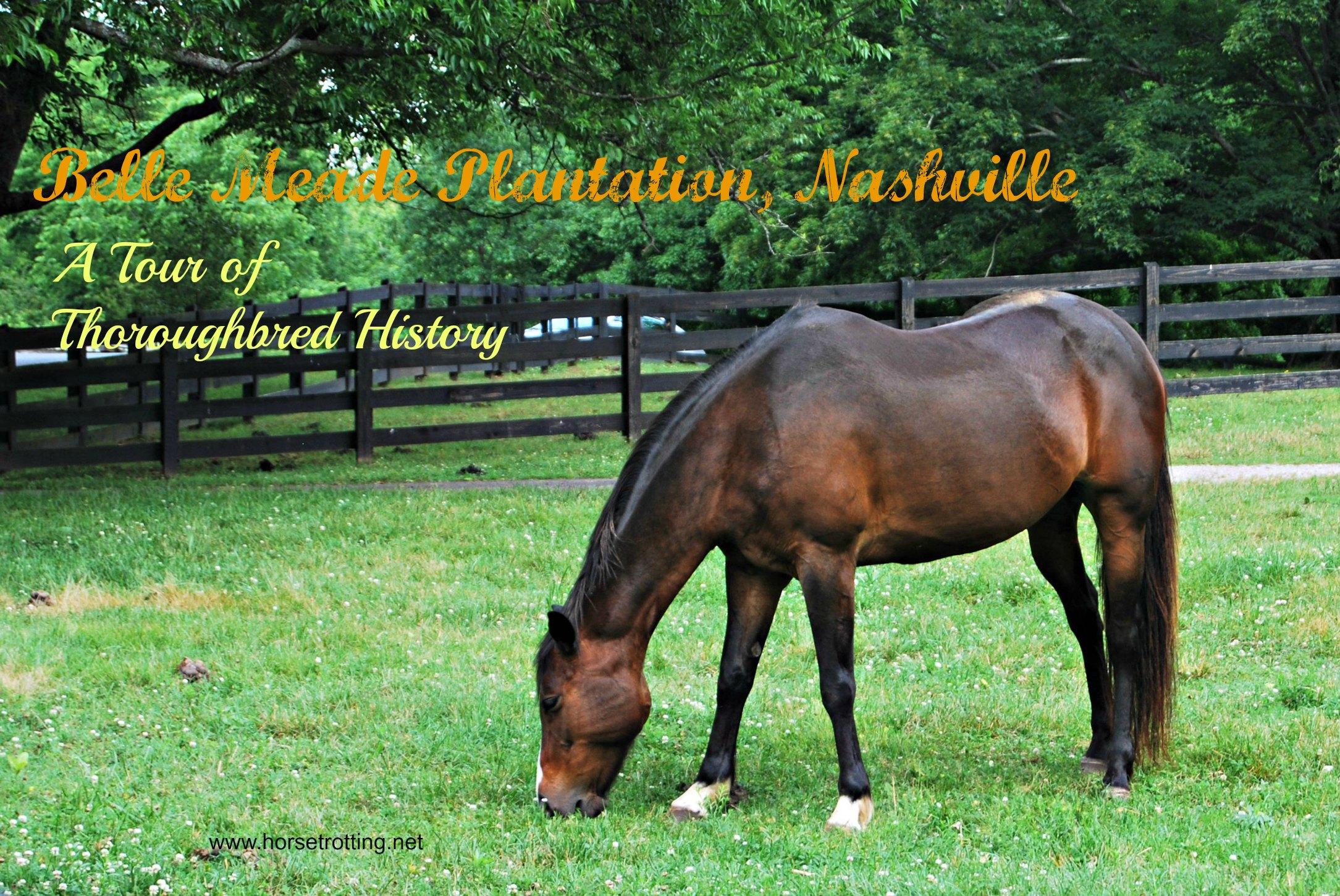 Travel Nashville, TN: Belle Meade; Belle Mare
