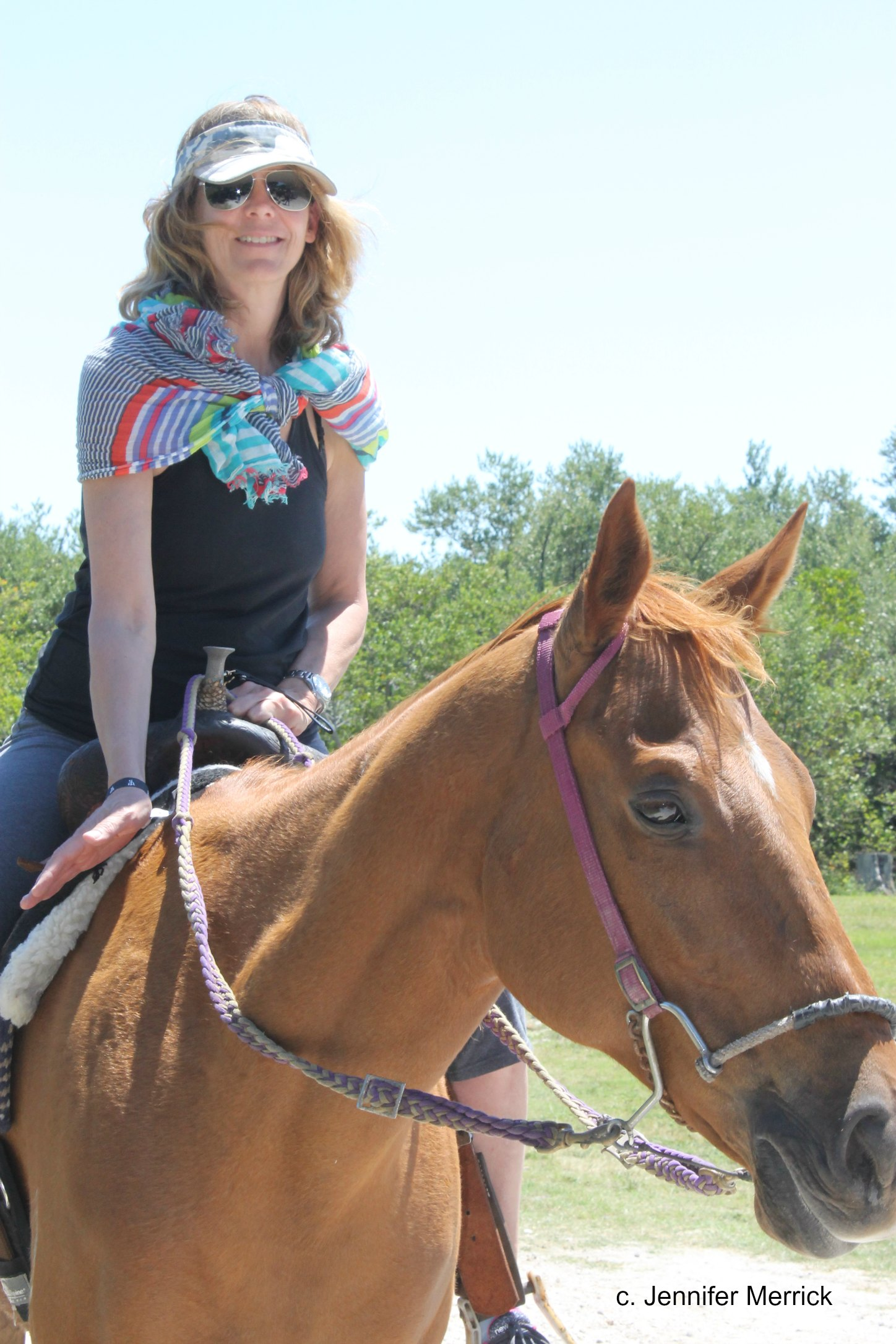Travel Florida: Beach Riding in St. Lucie County by Jennifer Merrick