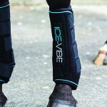 Horse Equipment Riding Gear Guides Horsey Hooves