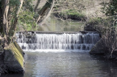 The waterfall as viewed from the board walk