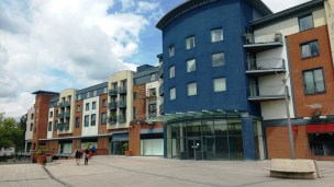 Gone, Beales in the Forum