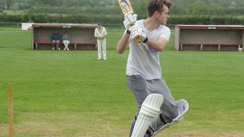 Cricket 017