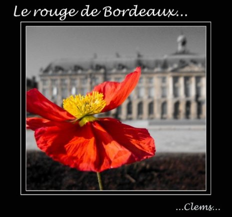le rouge de bordeaux