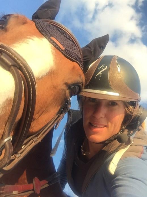 bpm horsecom