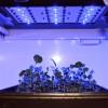 Photo-1-Blue-light-LEDs-and-broccoli-microgreens-Dean-Kopsell-Univ.-of-Tenn.13