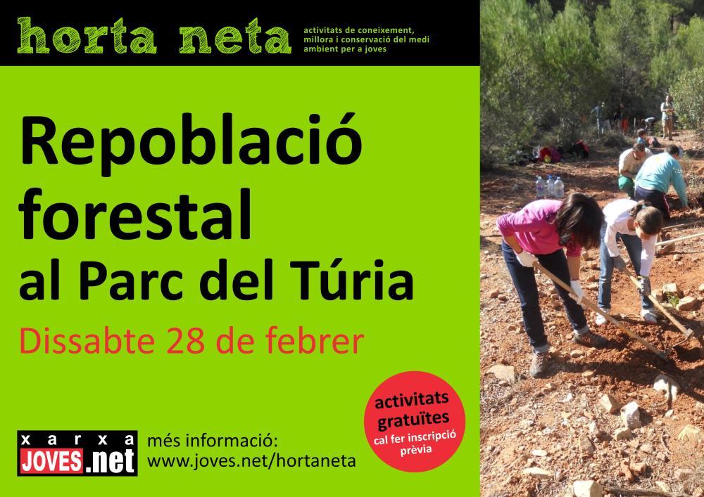 Repoblació forestal al Parc del Túria (4/4)