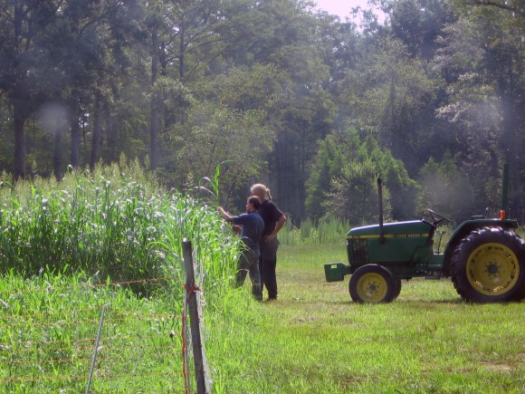 Photos of the CEFS Farm in Goldsboro, NC
