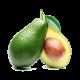 abacate hortifruti