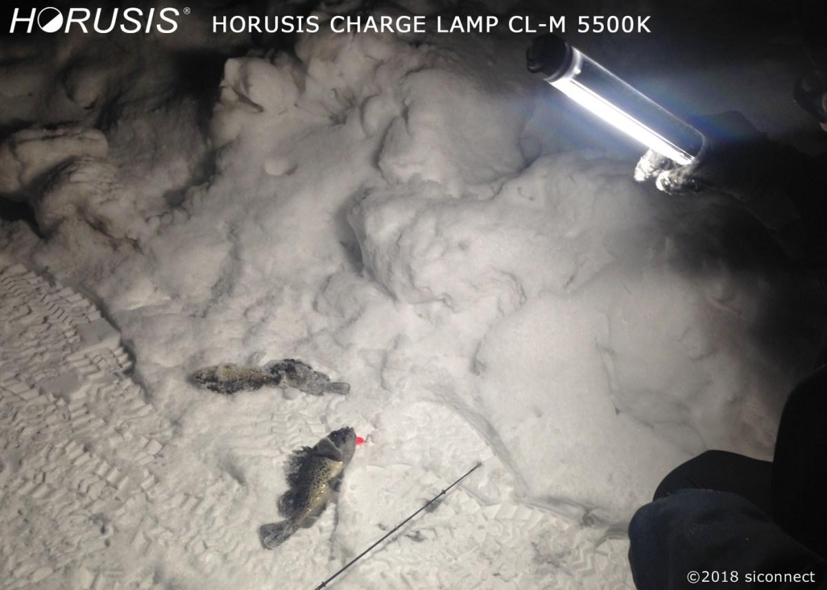 釣り撮影用照明、防水釣りライト、ヘッドライトよりも便利なhorusis/ホルシス